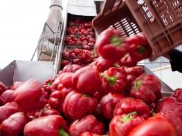 Perú espera que Colombia retire restricciones a productos agrícolas de la CAN y Mercosur