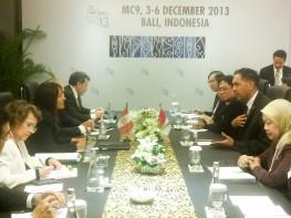 """Se aprueba """"paquete de Bali"""" durante IX Conferencia Ministerial de la OMC en Indonesia"""