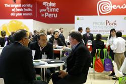 "Ministra Magali Silva: ""Perú concretó negocios por US$ 129 millones durante Fruit Logistica 2015"""