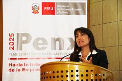 Ministra Silva destaca participación de regiones en la convocatoria de Mincetur para socializar el PENX 2025