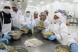 Ministra Silva: Empresa cusqueña ALSUR inició exportaciones de alcachofa procesada a Estados Unidos y la Unión Europea