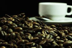 "Ministra Magali Silva: ""Intensificaremos presencia del café peruano en Estados Unidos durante SCAA 2015"""