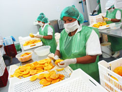 "Ministra Magali Silva: ""Exportaciones agropecuarias no tradicionales completaron 20 meses de crecimiento consecutivo a febrero 2015 """