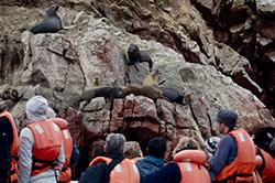 Ministra Silva destaca que más de un millón 398 mil turistas extranjeros visitaron el Perú de enero a mayo de 201