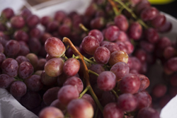 Empresas Peruanas generan compromisos de negocios por más de US$ 100 millones en la feria Asia Fruit Logística en Hong Kong