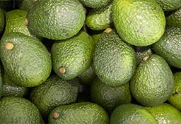 Palta peruana genera expectativa en feria de frutas y verduras en China