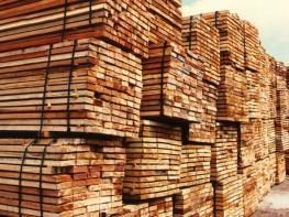 Madera peruana despierta interés entre los compradores europeos