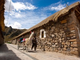 Semana PerúDesignNet convertirá al Perú en una plataforma de innovación en diseño