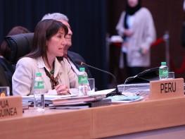 Ministra Magali Silva sigue una intensa agenda de trabajo en APEC
