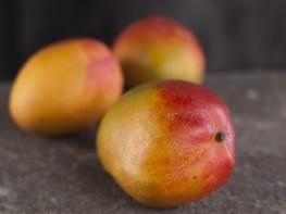 Corea del Sur aprueba el ingreso de mango fresco del Perú