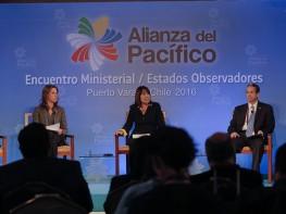 Encuentro de Ministros de la Alianza ratifica importancia de los 49 países observadores del bloque