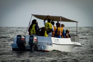 Avistamiento de ballenas - PIURA- Renzo Tasso