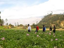 En Fiestas Patrias: vive nuevas experiencias descubriendo un nuevo lado del Perú con el Turismo Rural Comunitario