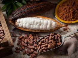 Mincetur presenta Plan Regional de Exportación para impulsar internacionalización de las empresas piuranas