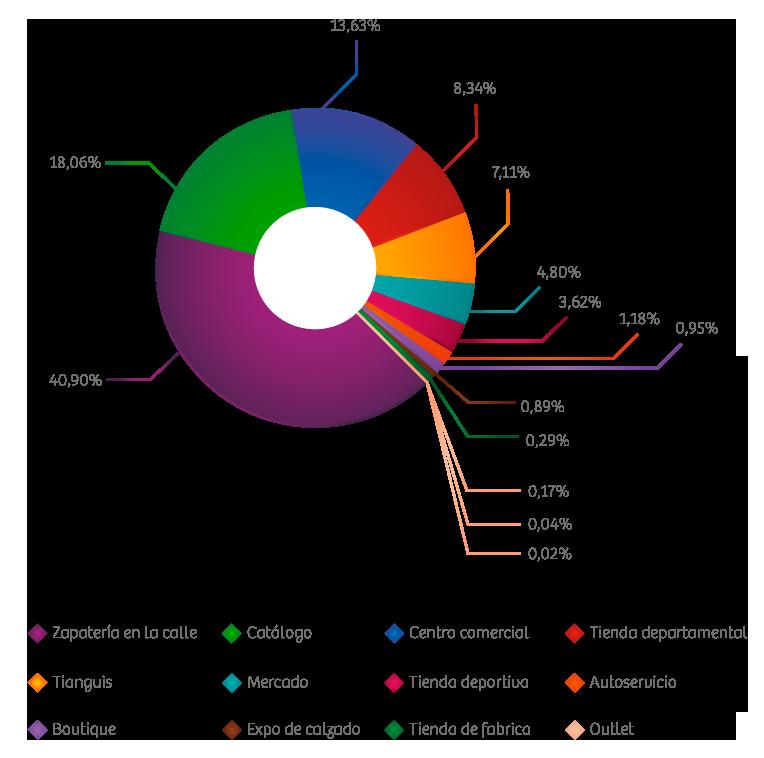 La segmentación del mercado en México está integrada de la manera  siguiente  33% calzado de dama 669c982648aff